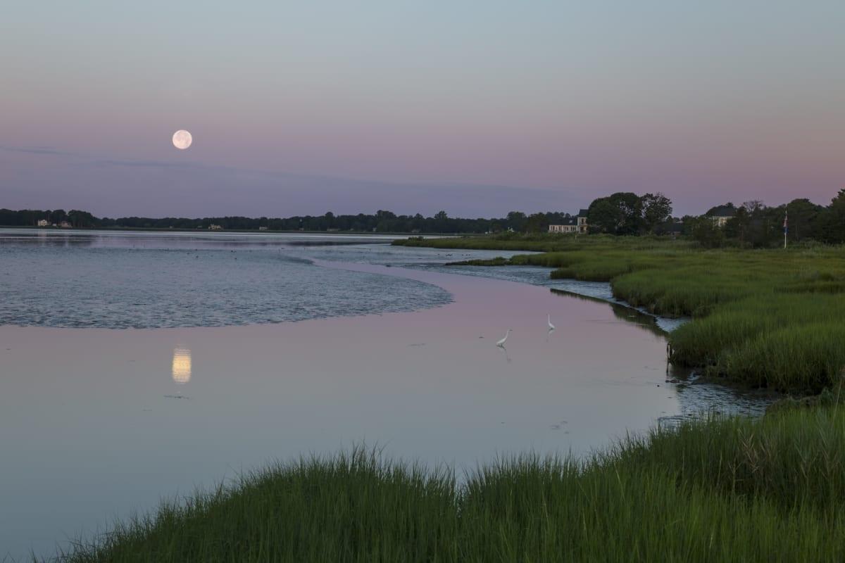 Moon over marshland.